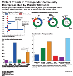 Charts for stats on murder of transpeople